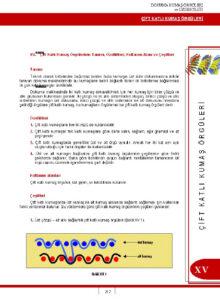 Microsoft Word - Örnek Sayfalar.doc